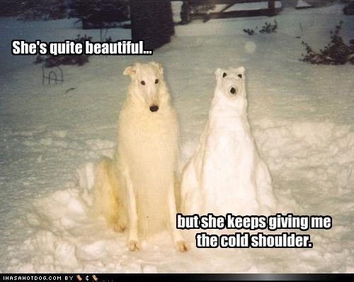 snow dogs: Snow Sculpture, Cant Wait, The Real, Soul Mates, Funny Pictures, Nails It, New Girls, Winter Formal, The Rules