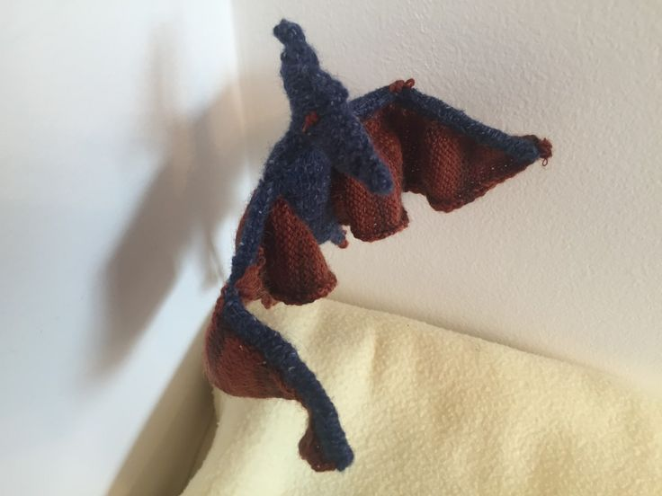 The knitted dinosaurs are coming! This fabulous Pterodactyl was knitted by Adam, and submitted to the Best in Show Website! Knitting pattern from Best in Show: Knit Your Own Dinosaur. Knitted animals from the best in show books can be submitted to bestinshowbooks.com