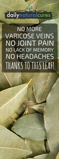 No More Varicose Veins, No Joint Pains, No Lack Of Memory, No Headaches Thanks To Bay Leaf!