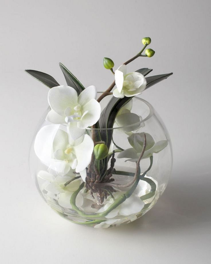 Top 25 Orchid Arrangements Ideas To Enhanced Your Home Beauty