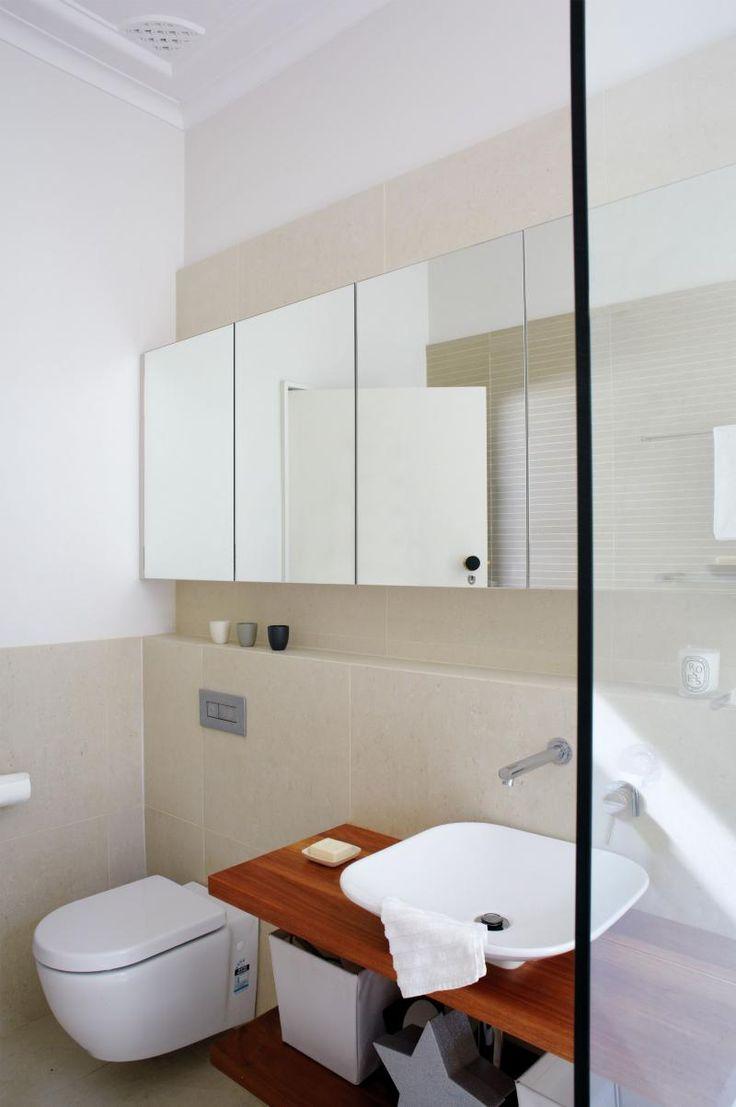 bathroom-renovation-toilet-basin-apr11