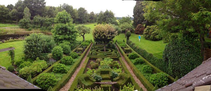 Buxus garden