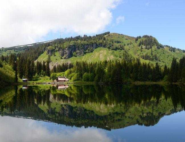 Lac de Chavonnes à Ormont-Dessous