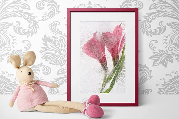 """$20+ """"D'Amor"""" - Floral Photography Fine Art Print Limited Edition"""
