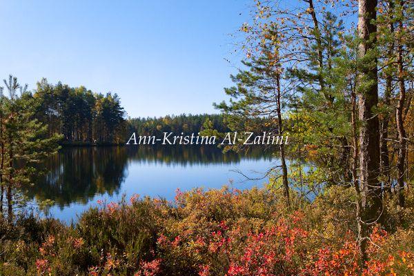 Ann-Kristina Al-Zalimi, holma-saarijärvi, nuuksio, järvi, syksy, ruska, finland, suomi, noux, nationalpark, kansallispuisto