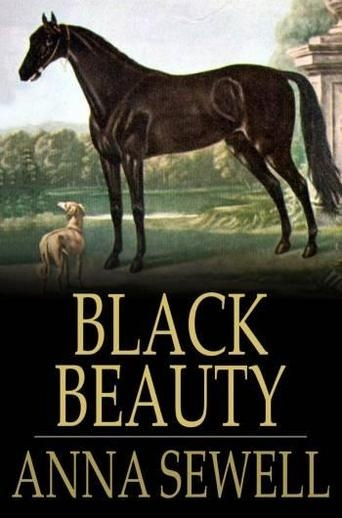 Black Beauty Original Book Cover : Best images about black beauty book covers on pinterest