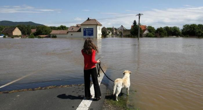 A girl from the village of Mlekojedy stands with her dog in front of the flooded road to her home, near the city of Litomerice, Czech Republic, June 5, 2013. REUTERS-Petr Josek