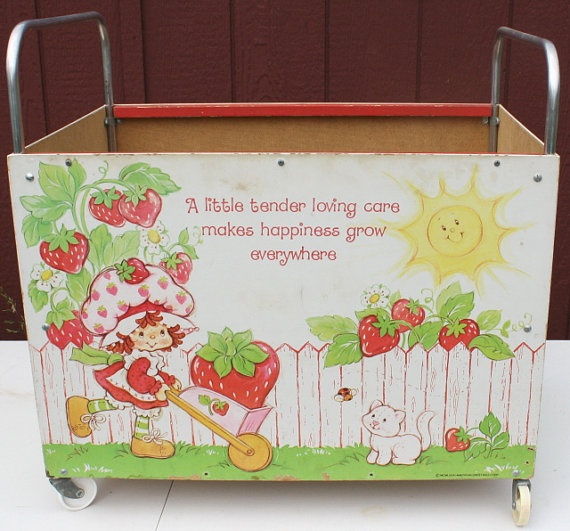 Strawberry Shortcake Toy Box.  We had HOURS of fun playing in this!!  One of us would sit in it while the other would push the other.  It was a sad day when we broke it!