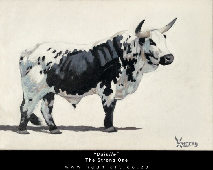 """""""Oqinile""""  The Strong One (Zulu translation) Nguni Bull Oil Painting ***New July 2017*** Medium: Oil on canvas Size: A2 42cm x 59.4cm"""
