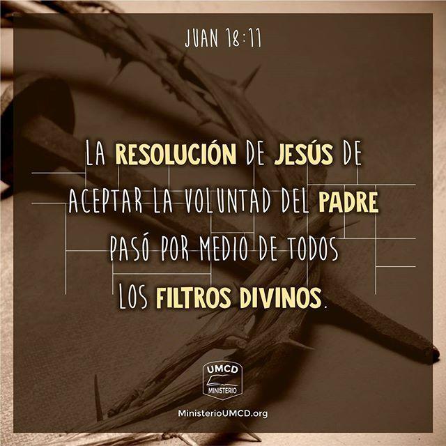 """Viviendo Su voluntad Juan 18:4-5, 10-11 """"Pero Jesús, sabiendo todas las cosas que le habían de sobrevenir, se adelantó y les dijo: ¿A quién buscáis? Le respondieron: A Jesús nazareno. Jesús les dijo: Yo soy. Y estaba también con ellos Judas, el que le entregaba. […] Entonces Simón Pedro, que tenía una espada, la desenvainó, e hirió al siervo del sumo sacerdote, y le cortó la oreja derecha. Y el siervo se llamaba Malco. Jesús entonces dijo a Pedro: Mete tu espada en la vaina; la copa que el…"""