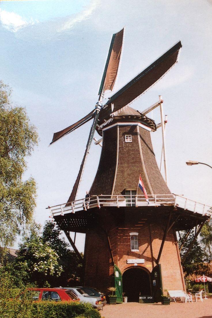 """Postal de Paul, desde Países Bajos: Vriescheloo (Gr.) """"De Korenbloem"""""""