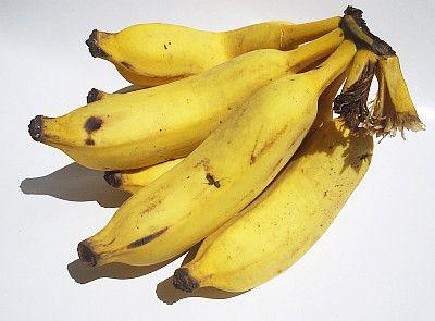 Cacho de bananas