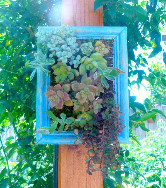Succulent Wall Art Vertical Planter Garden Living Via Etsy