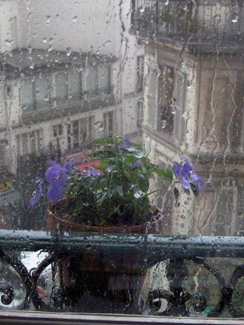 Rainy Day, Paris, France photo via famir - I so want to go back!