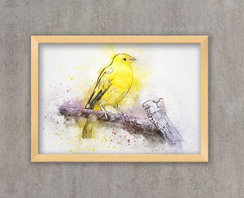Uccello stampe acquerello poster acquerello stampe - Stampe e quadri ikea ...