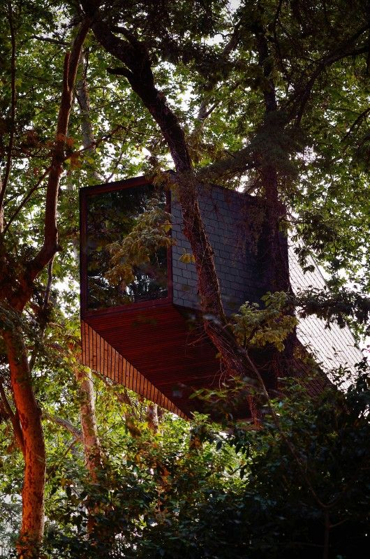 Tree Snake Houses / Luís Rebelo de Andrade + Tiago Rebelo de Andrade
