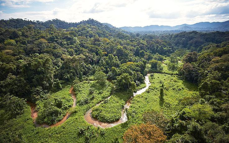"""The jungle-choked remains of a """"lost city"""", abandoned by a mysterious civilisation several centuries ago and long fabled for reports of its gold and """"monkey children"""", have been uncovered in the depths of the rainforests of Honduras."""