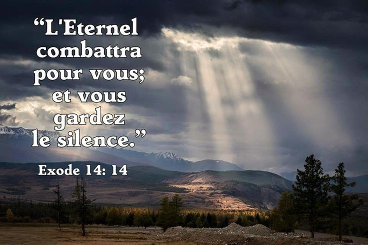 Exode 14 : 14 | L'Epouse de Christ