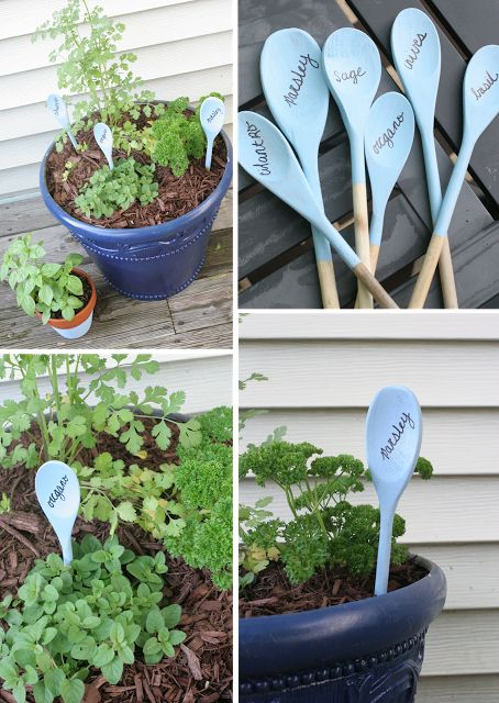 Painted Herb Planters and wooden spoon plant markers
