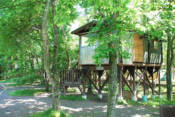 ツリーハウス・フォレスト 北軽井沢スウィートグラスの宿泊施設