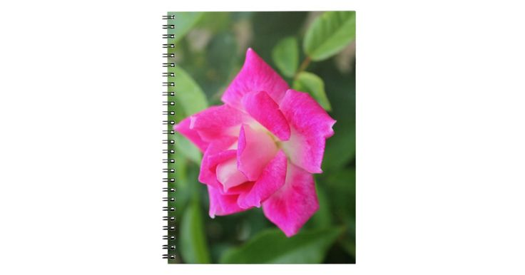 Pink Rose Themed Notebook