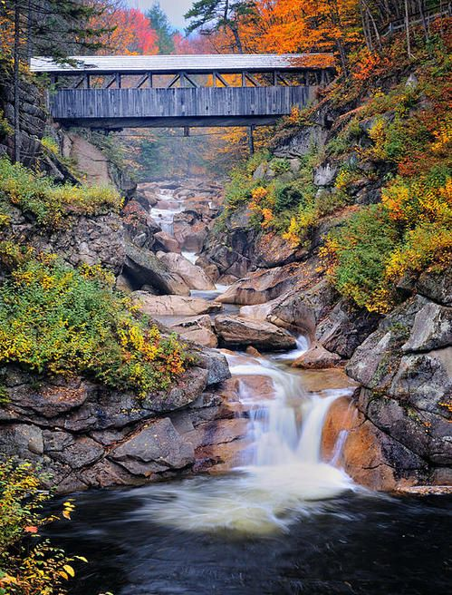 Sentinal Pine Bridge, White Mountains National Forest, New Hampshire | While staying at Mill Falls at the Lake