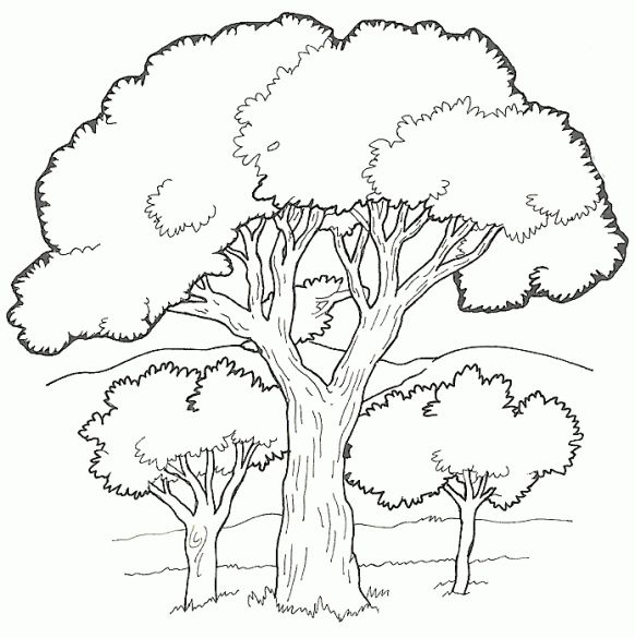 free zakumi coloring pages - photo#33