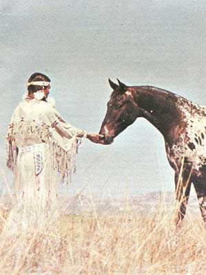 "In the 1600's French trappers noticed colorful horses inhabiting The Palouse River Valley, home to the Nez Perce Indians in Washington and Idaho. The trappers began referring to this type of horse as ""a Palousie"" which later became Appaloosa. However these little spotted horses came to them, the Nez Perce realized their value for hunting and war in the high plateau country. Long-skilled as dog breeders, the Nez Perce where the first selective breeders of American Appaloosas."