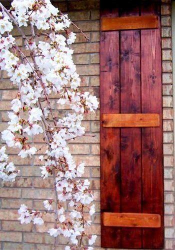 Best  about Shutters! on Pinterest  Exterior shutters