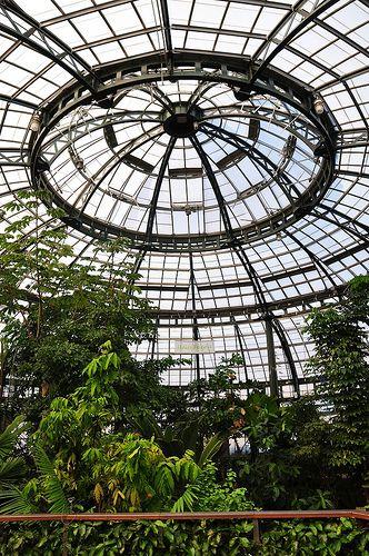 1000 images about conservatories on pinterest - Huntington beach botanical garden ...