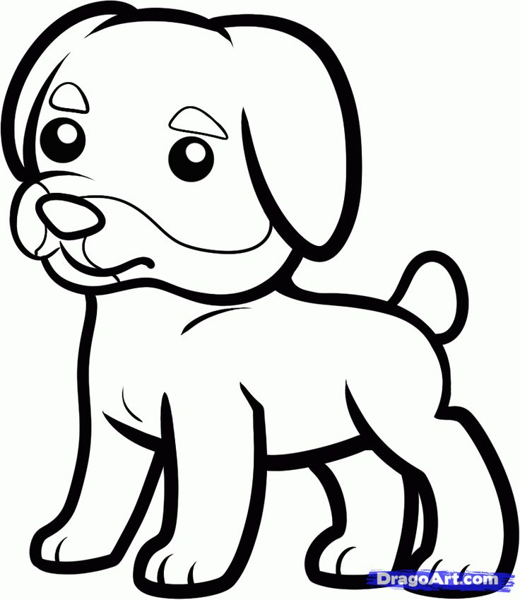 Children S Scribble Drawing : Best images about animals on pinterest free vector