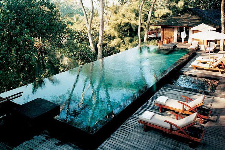 02-Como-Shambhala-Resort: Lap Pools, Como Shambhala, Dreams Home, Swim Pools, Comoshambhala, Dreams Pools, Infinity Pools, Outdoor Pools, Bali Indonesia