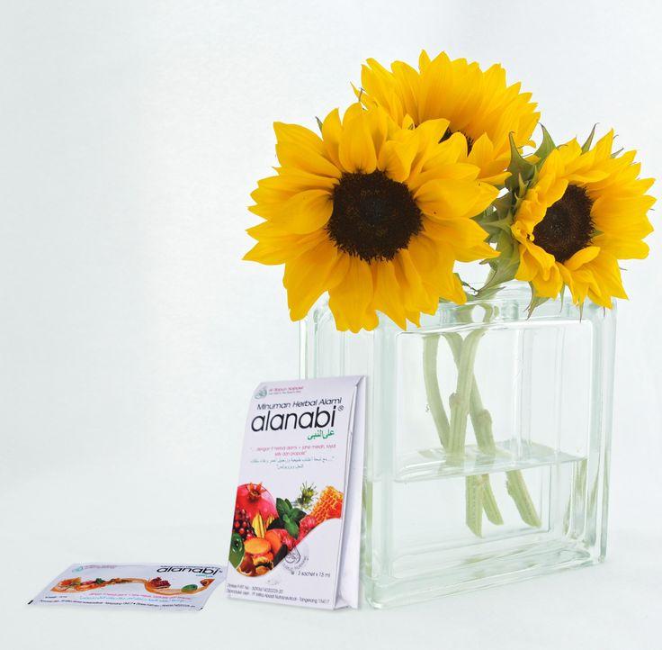 Bunga matahari memiliki nama latin Helianthus annuus Linn ...