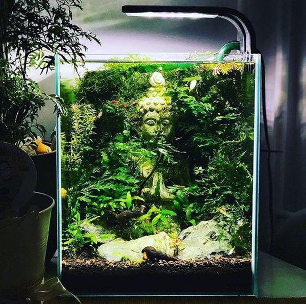 35 Modern Mini Aquarium Designs For Your Small Spaces Mini Aquarium Aquarium Design Aquascape Aquarium