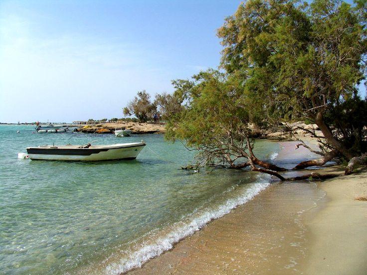 New on #Activities  : #Elafonisi   #Beach  in #West   #Crete  : http://www.cretetravel.com/activity/elafonisi-beach-in-west-crete/