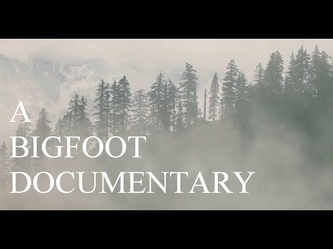 """A BIGFOOT DOCUMENTARY!! -  Scary Encounters & Sightings of """"Real Sasquatch & Bigfoot"""" - YouTube"""