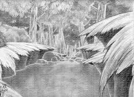 Resultado de imagen para selva dibujo lapiz