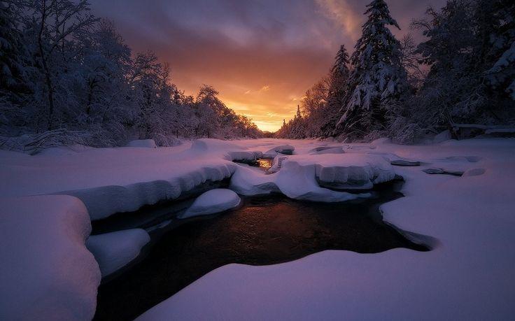 Krajobraz, zachód słońca, zimno, las, niebo, Maine, mróz, chmury, drzewa, śnieg tapeta) w naszej kolekcji Darmowe