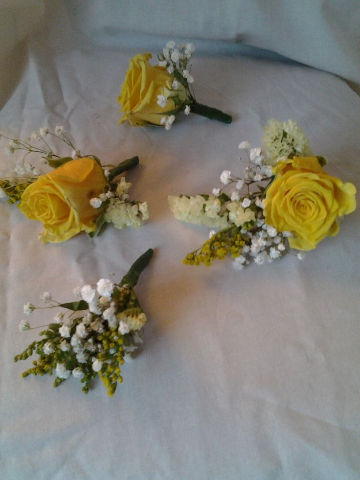 Yellow roses and gip