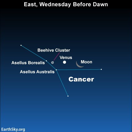 Moon and Venus in front of the constellation Cancer before dawn September 12
