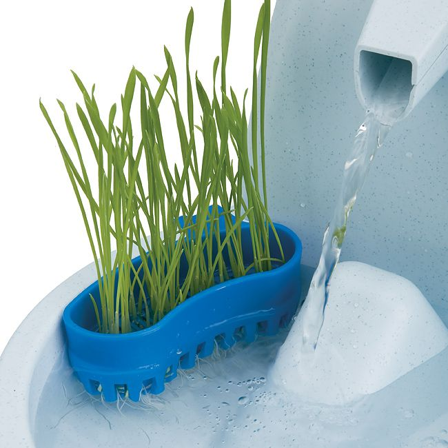 The Aqua Garden cat grass uses no soil or additives, just the continuously circulating water of the Drinkwell Pet Fountain to grow cat grass in a matter of days. Wheat grass is used to help manage hairballs, aid in digestion and can even save houseplants!