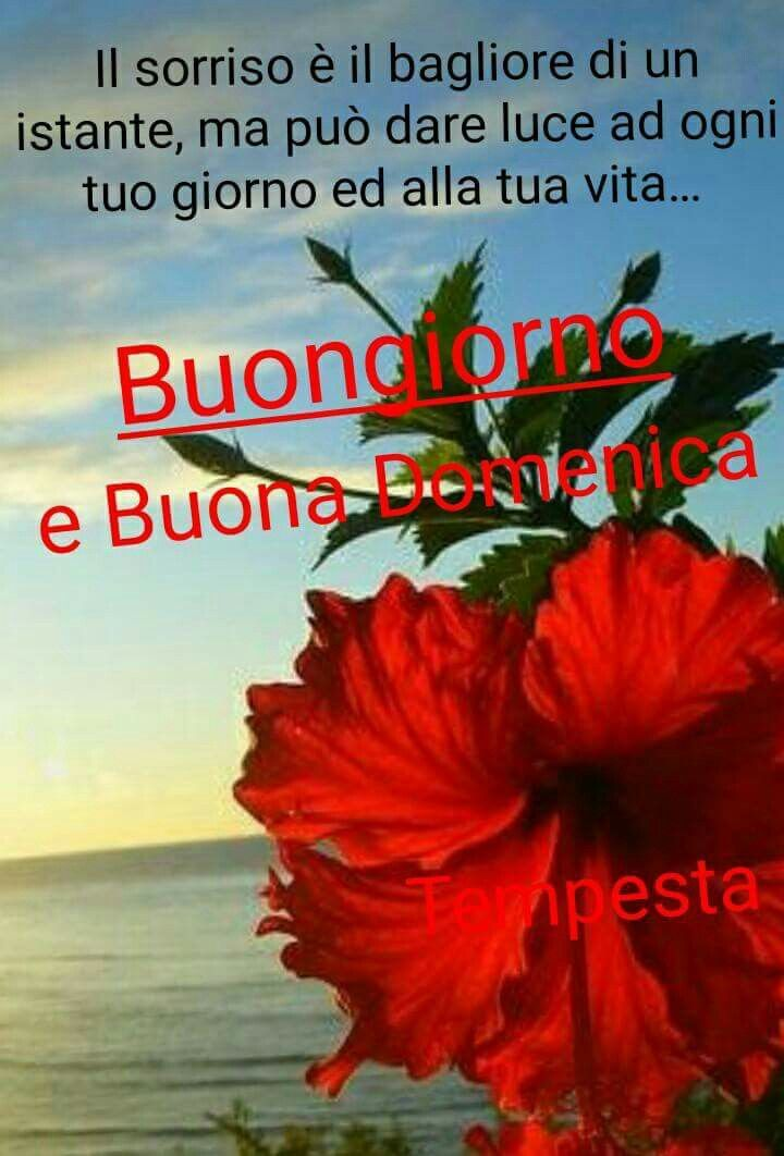 44 best immagini buona domenica images on Pinterest