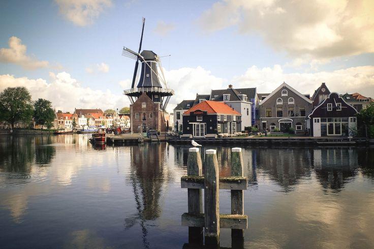 A Haarlem holandesa - A Path to Somewhere