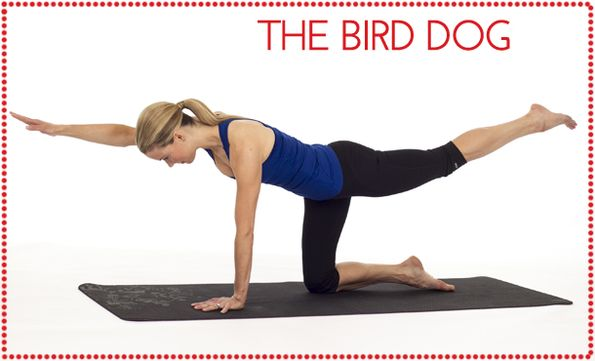 3 Yoga Poses to Strengthen your Core: The Bird Dog