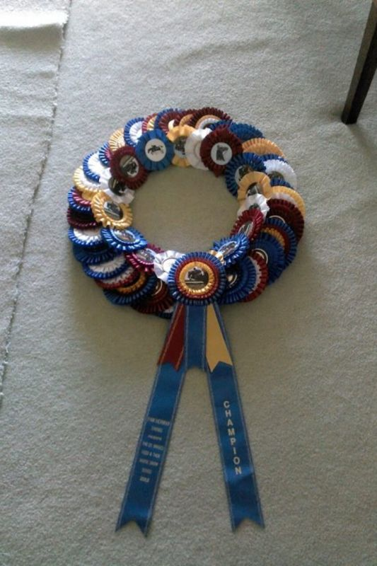 Love this horse show ribbon wreath. Great idea for using all the rosetts