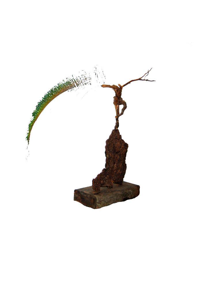 Gevonden kunst - Balans, gevonden hout, pauwenveer