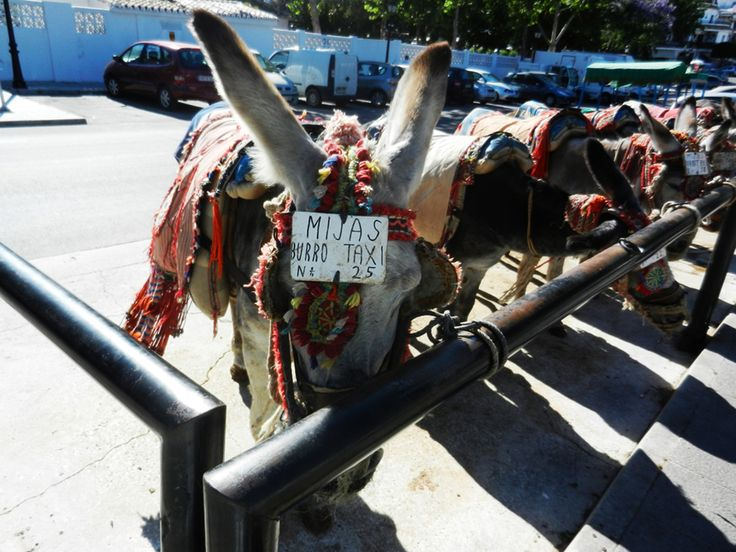 Donkey Transport Called Burro-Taxi in Mijas, Spain. #travel #destination #Mijas #Spain #Donkey #Transport http://travellingwizards.com/destinations/countries/spain/mijas