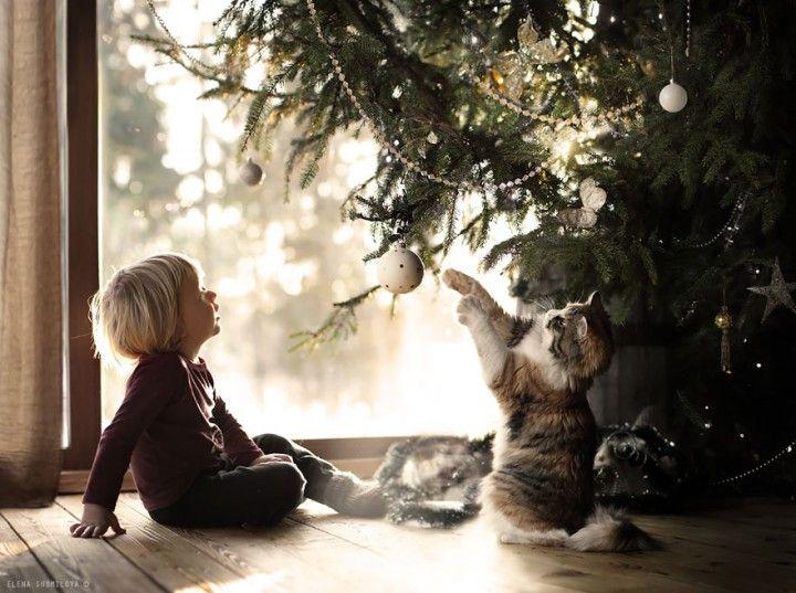 enfants animaux elena shumilova  (8)