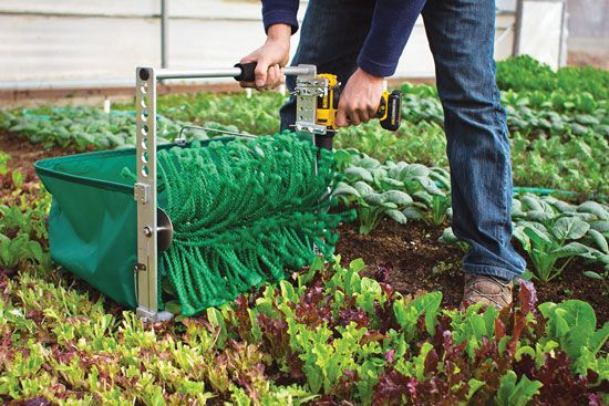 A new harvesting tool will make it much easier for market gardeners to collect their organic salad greens. Check out the Quick Cut Greens Harvester.