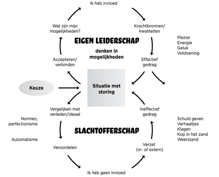 De cirkel van 8. Bron: Van Harte & Lingsma